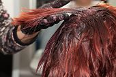 stock photo of hair dye  - Hair Coloring - Hairdresser dyeing client