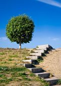 image of stepping stones  - Stone stairs on a hill  - JPG
