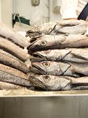 stock photo of hake  - Hakes in a market fished in seabed - JPG