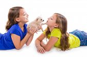 stock photo of twin baby girls  - happy twin sister kid girls and puppy dog lying playing on white background - JPG