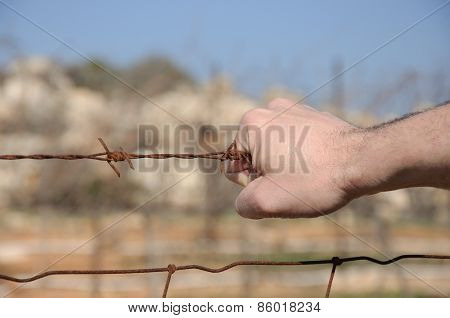 Rusty Barbed Wire In A Man's Hand