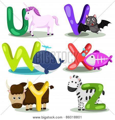 Illustrator alphabet animal LETTER - u,v,w,x,y,z