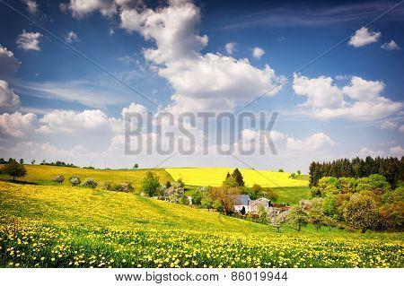 Beautiful Countryside Landscape