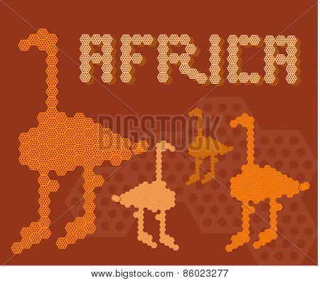 Africa Continent Animal Adventure Land People Concept