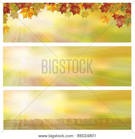 Vector autumnal banners.