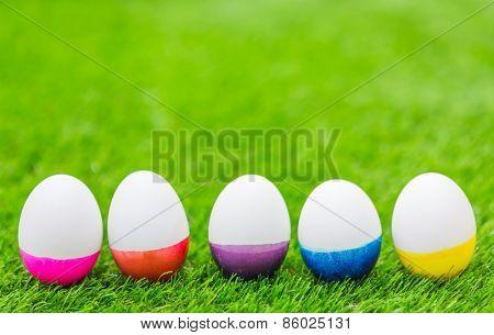 Easter Eggs on Fresh Green Grass