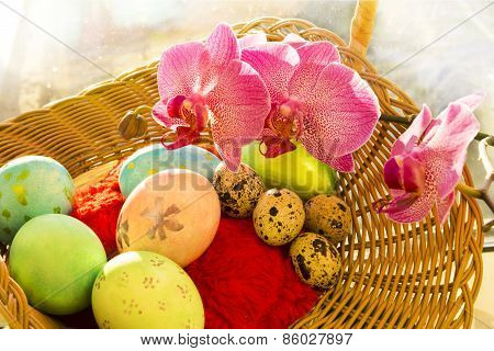 Easter and quail eggs in a wicker basket with Orchid, close