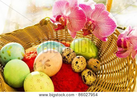 Easter and quail eggs in a wicker basket with Orchid, sunrise