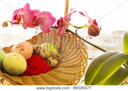 Easter and quail eggs in a wicker basket, Orchid