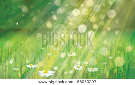 Vector nature sunny background.
