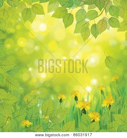 Vector spring background.