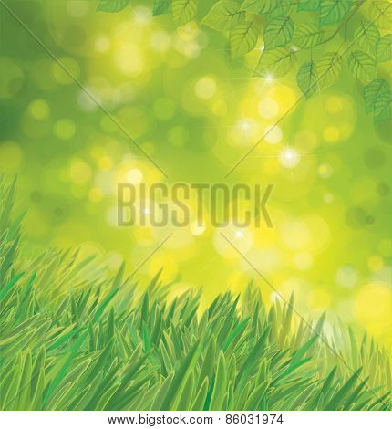 Vector green leaves and grass.