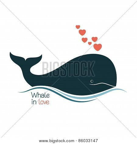 Whale in love