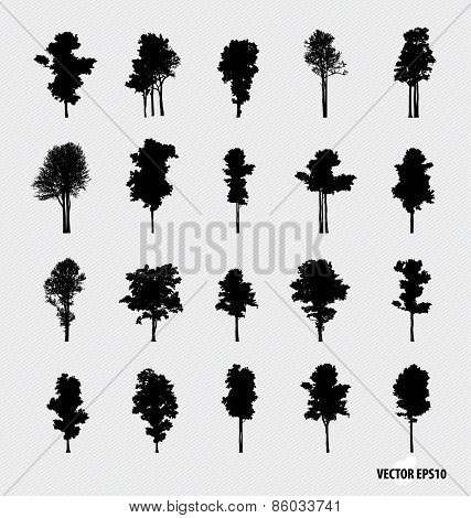 Set of tree silhouettes. Vector illustration.