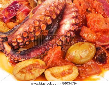 Octopus With Tomato Sauce And Olives