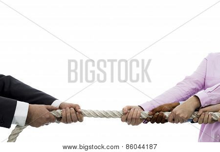 Tug Of War Among Businessman And Businesswomen