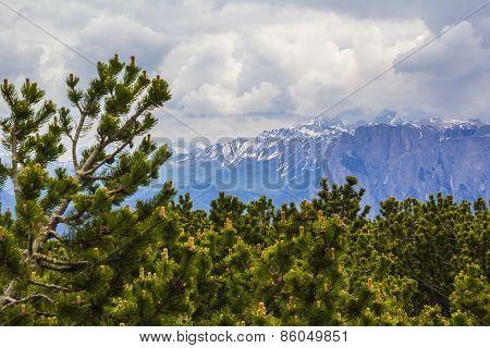 views of the Dolomites around Bolzano