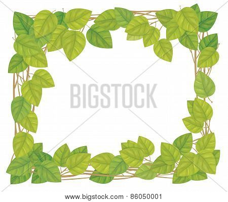 Vector frame from green leaves.