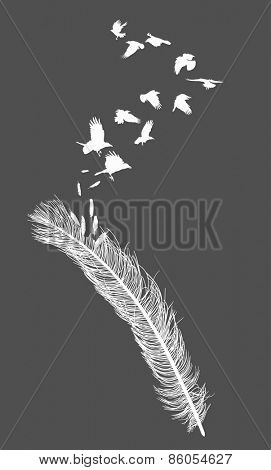 illustration with crows flying from feather silhouette isolated on grey background