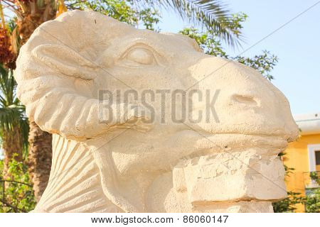 Am-headed Sphinx