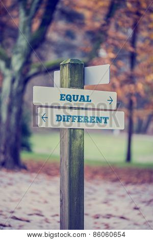 Rustic Wooden Sign In An Autumn Park With The Words Equal - Different