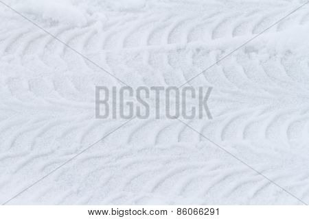 Tracks On The Snow
