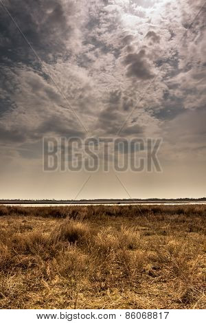 dried field with moody sky before coming rain