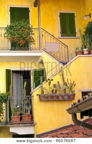 Front of a rustic house with cactus plants in terracotta pots, balconies, green window shutters, sta