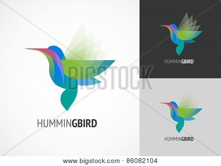 Tropical birds - humming bird vector icon