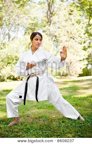 Asian Practicing Karate
