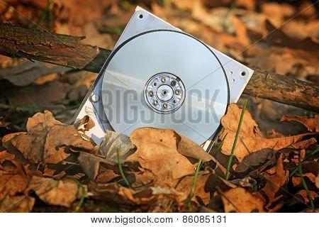 broken computer hard drive in autumn forest