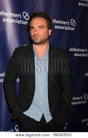 LOS ANGELES - MAR 18:  Johnny Galecki at the 23rd Annual A Night at Sardi's to benefit the Alzheimer's Association at the Beverly Hilton Hotel on March 18, 2015 in Beverly Hills, CA