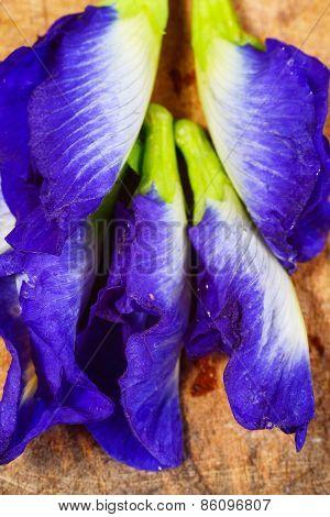 Purple Flowers On A Wooden Floor