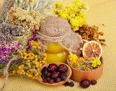 picture of tansy  - Medicinal herbs with honey calendula oats immortelle flower tansy herb wild rose dried lemon - JPG