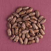 picture of pinto bean  - Top view of circle of pinto beans against pink vinyl background - JPG
