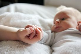 stock photo of infant  - Close up focus on the hands of a newborn baby girl and her toddler brother lovingly holding hands with infant in the background - JPG