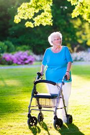 picture of rollator  - Happy retired senior lady with walking disability enjoying a day in the park going for a walk with a wheel chair or walker - JPG