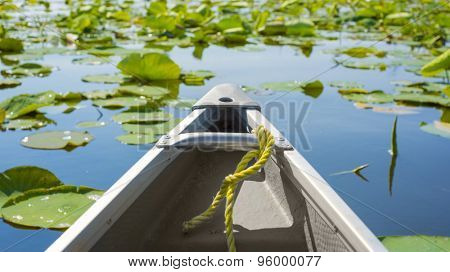 Tip of a canoe sailing among lily pads. Pelee point conservation area, Ontario, Canada