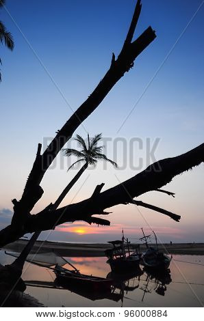 Silhouettes Of Coconut Trees On The Beach And Sunset