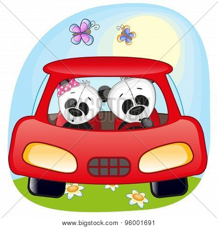 Two Pandas In A Car
