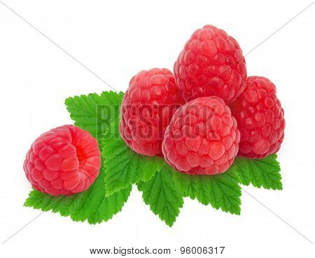 Heap of fresh raspberries