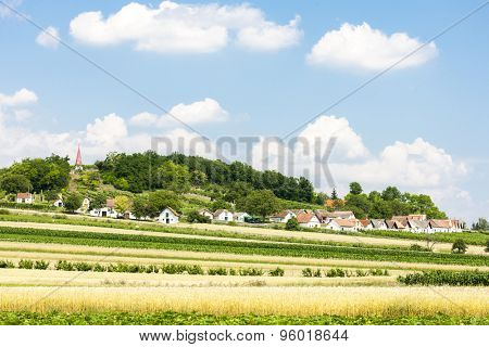 wine cellars with field, Galgenberg, Lower Austria, Austria