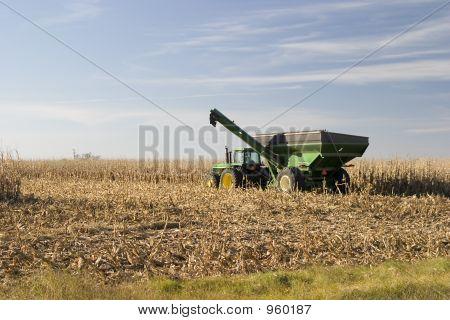 Corn Hauler