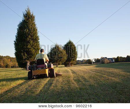 Senior cortar grama