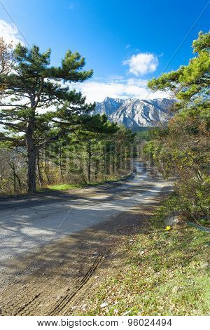 Curved Asphalt Road In High Mountains Of Crimea