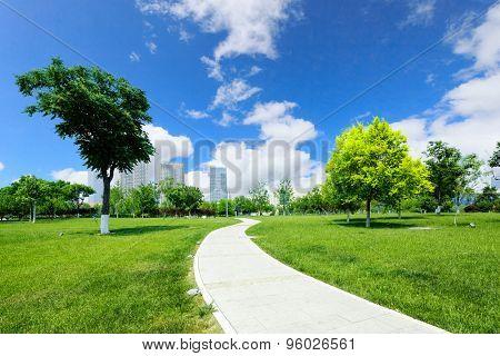 long footpath in meadow of park