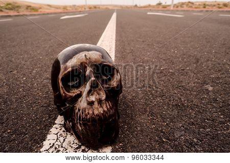 Skull on the Asphalt Street