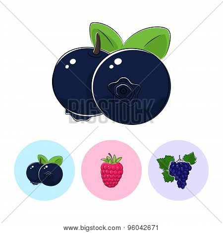 Fruit Icons, Blueberries, Raspberries ,grapes