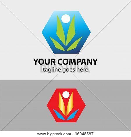 Hexagon shaped sign design elements. Abstract hexagonal vector symbols green eco natural
