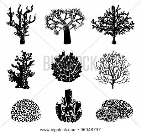 Vector set of black coral silhouettes